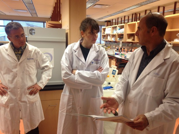Deeley Research Centre: With Dr. Nelson and Dr. Webb discussing plans for the immunotherapy lab clinical trials.