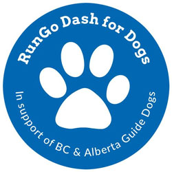 rungo-dash-for-dogs